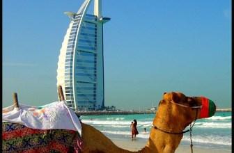 Etihad Miles Redemption and Five Star Abu Dhabi and Dubai