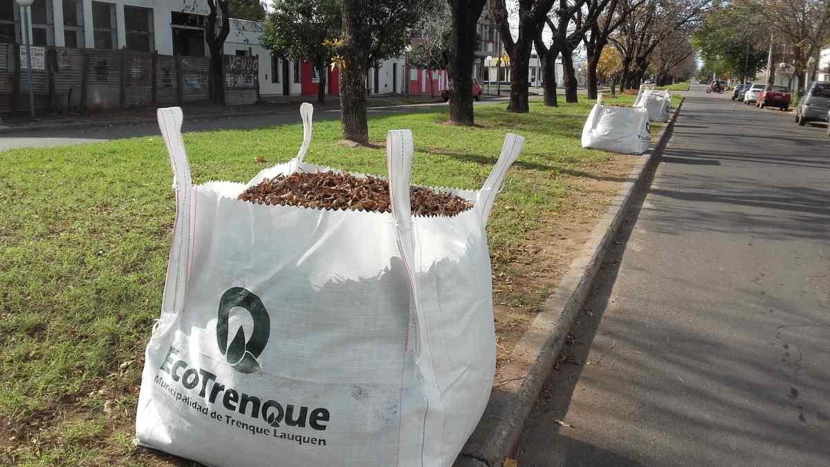 El Municipio coloca bolsones para la recolección de hojas