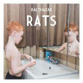 Balthazar - Rats (PIAS / Roughtrade)