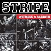 strife-rebirth - Tribe Online Magazin