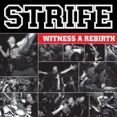 strife-rebirth - Tribe Online Magazin