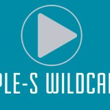 Triple S Wildcards 2015