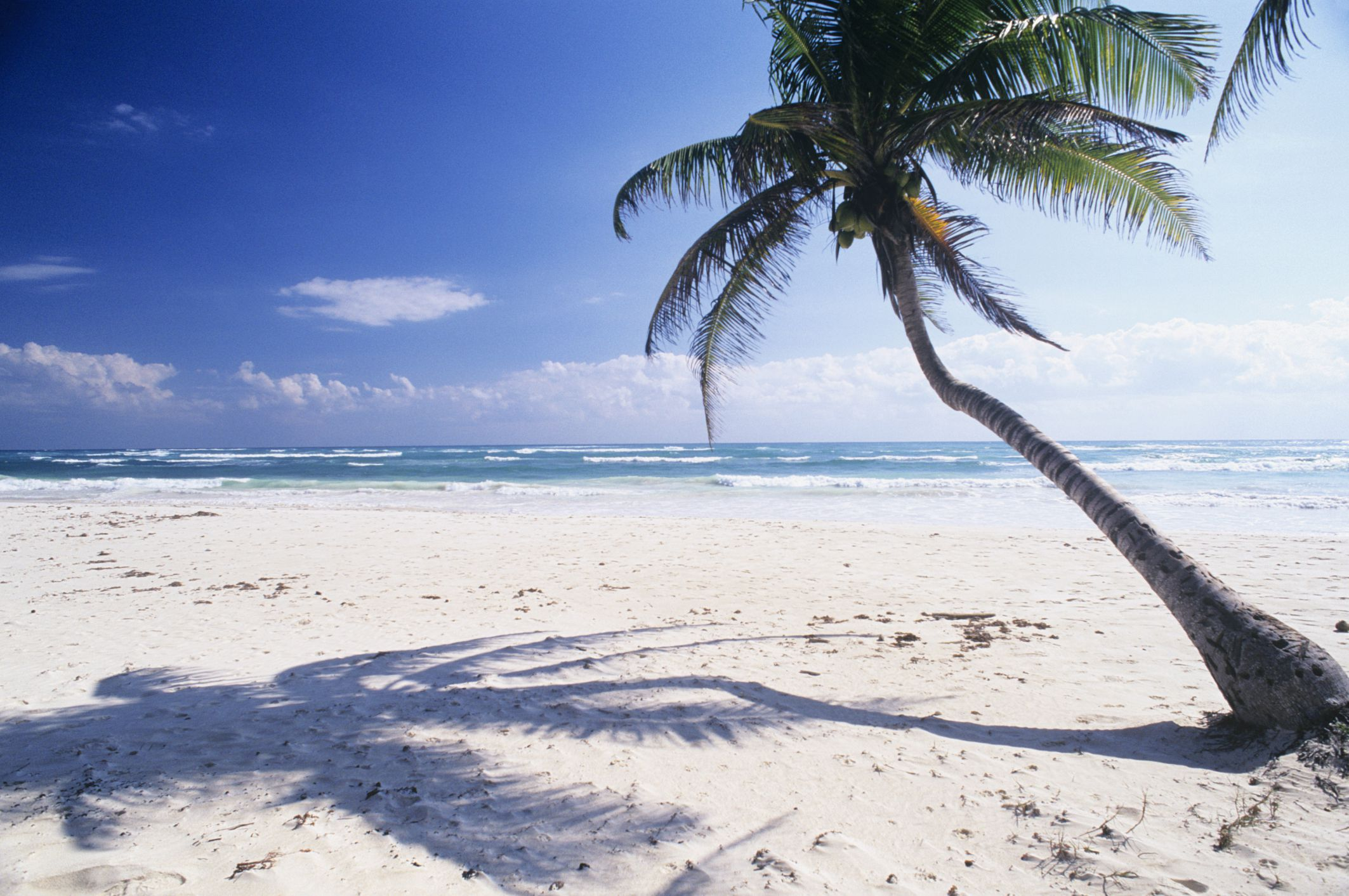 Where to Find Mexico s Best White Sand Beaches