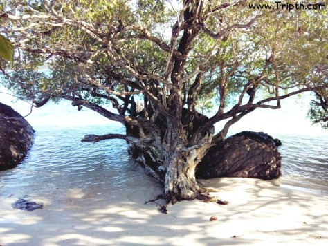 เกาะขาม ตราด By Tripth (53)