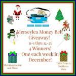 Merseylea Money Belt #Giveaway Ends Dec. 25 ENDED