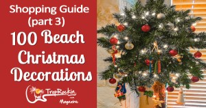 Shopping Guide: 100 Beach Christmas Decorations (Part 3)