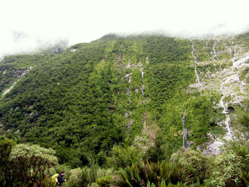 Second day hiking on Milford Track