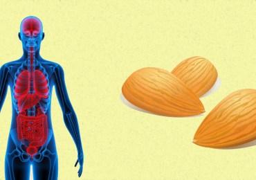 almonds-health