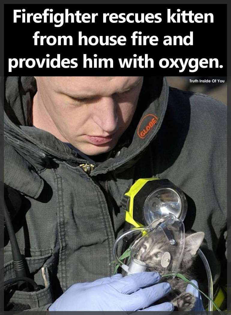 Firefighter rescues kitten from house fire and provides him with oxygen.