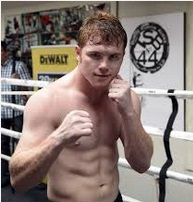 Canelo Alvarez Money Per Fight 2013