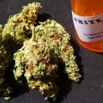Fight to Legalize Medical Marijuana Contunues