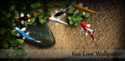 Koi Free Live Wallpaper, anima el escritorio de tu dispositivo Android con este estanque de ...