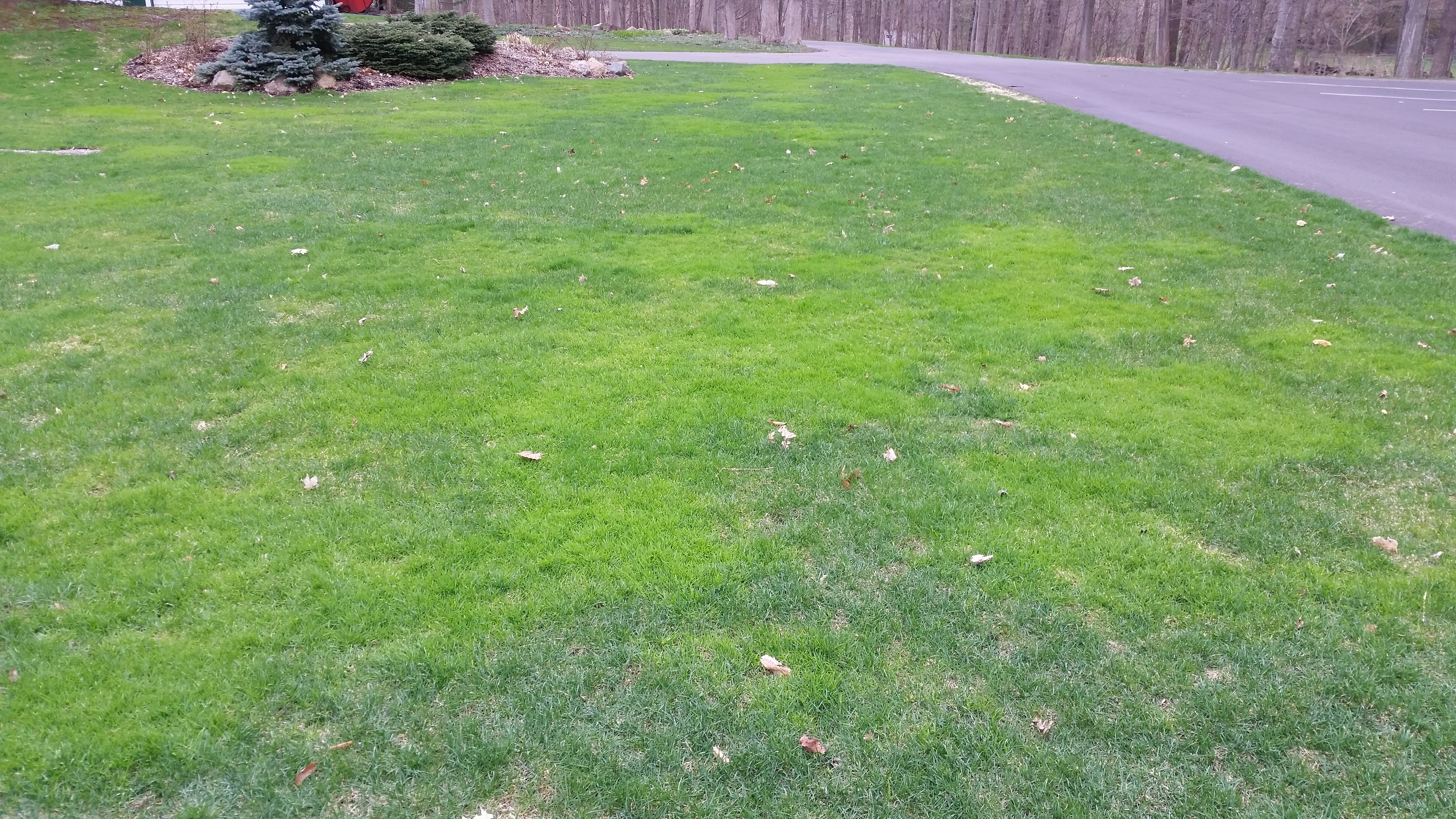 Fullsize Of Gypsum For Lawns