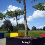 Kan ik bomen plaatsen op een Dakterras met gewichts-limiet?