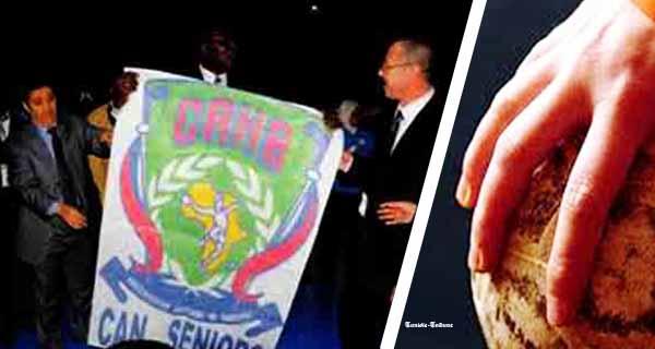 Algérie 2014 : 21ème Coupe d'Afrique des Nations seniors de Handball : les Pays qualifiés connus