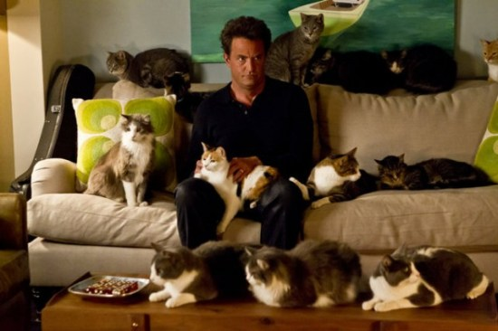 """Go On (NBC) """"He Got Game, She Got Cats"""" Episode 2 (7)"""