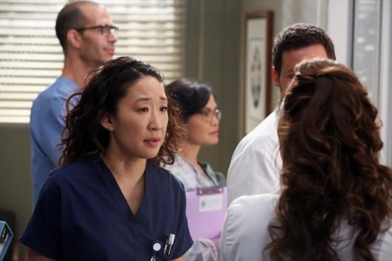 Grey's Anatomy Season 9 Episode 11 The End is the Beginning is the End (11)