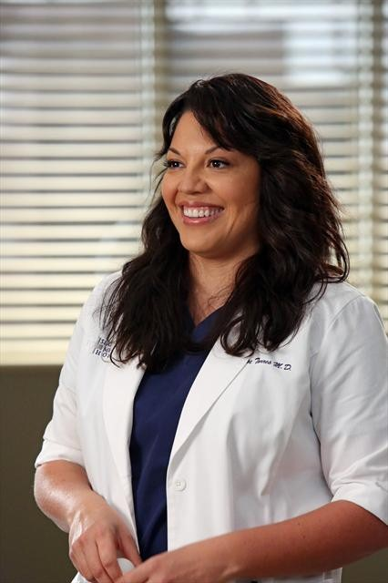 Grey's Anatomy Season 9 Episode 11 The End is the Beginning is the End (10)