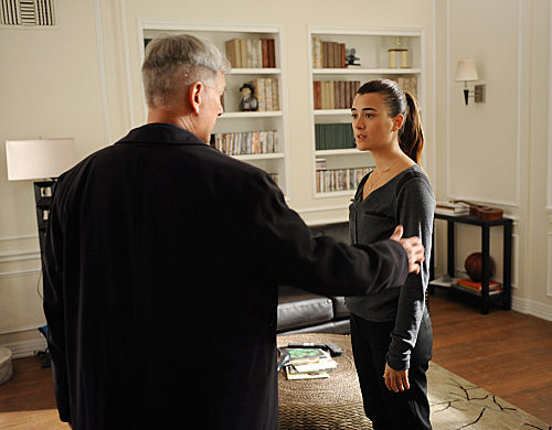 NCIS Season 10 Episode Shiva (7)