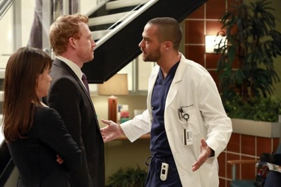 Grey's Anatomy Season 9 Episode 14 The Face of Change (1)