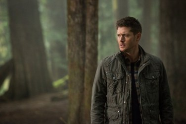 Supernatural - The Werther Project