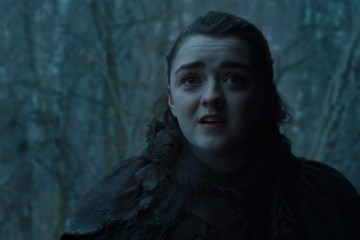 arya facing nymeria GoT S7E2