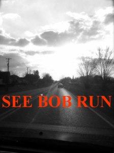 1363875558-see_bob_run