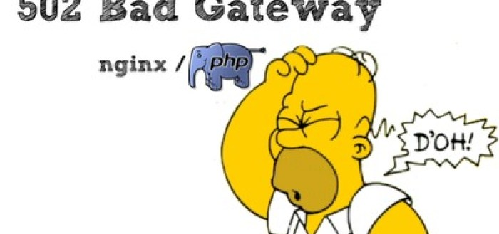 nginx 502 error with PHP