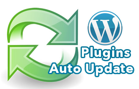 WordPress Plugin Auto Updates