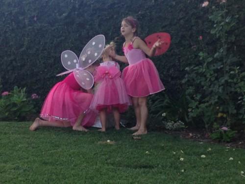 1 Fairies