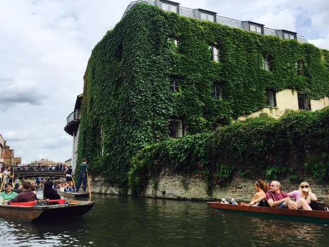 Punting on the Cam river by an ivy covered building