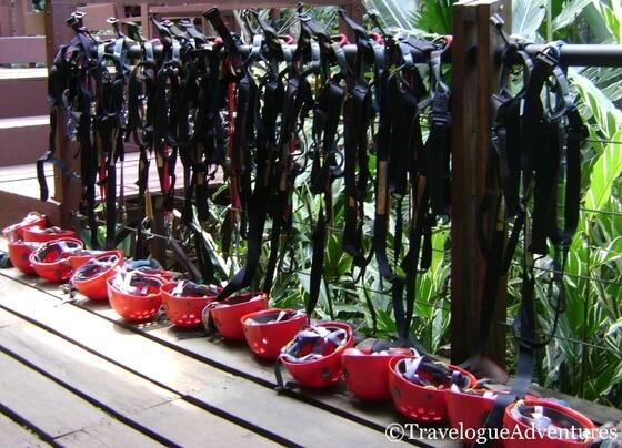Zip line harnesses Picture