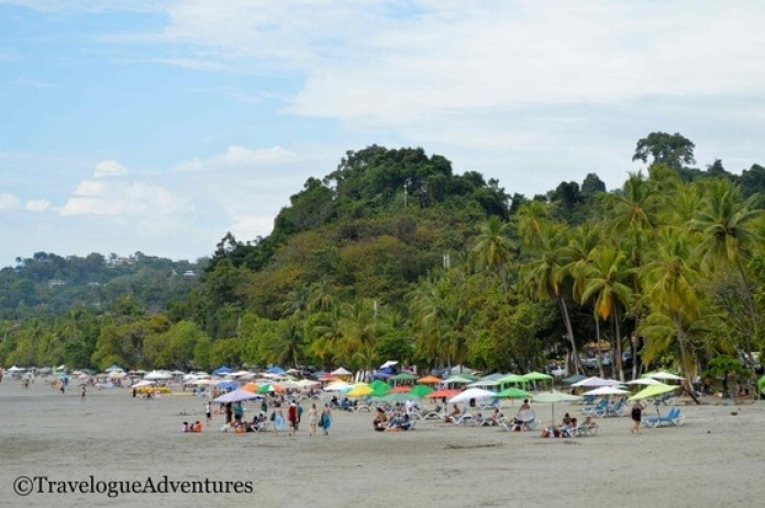 Manuel Antonio Beach Picture