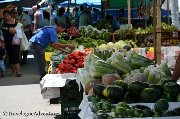 A fun, free activity, visiting the local farmers market - More Tips for How to Save on Travel to Costa Rica