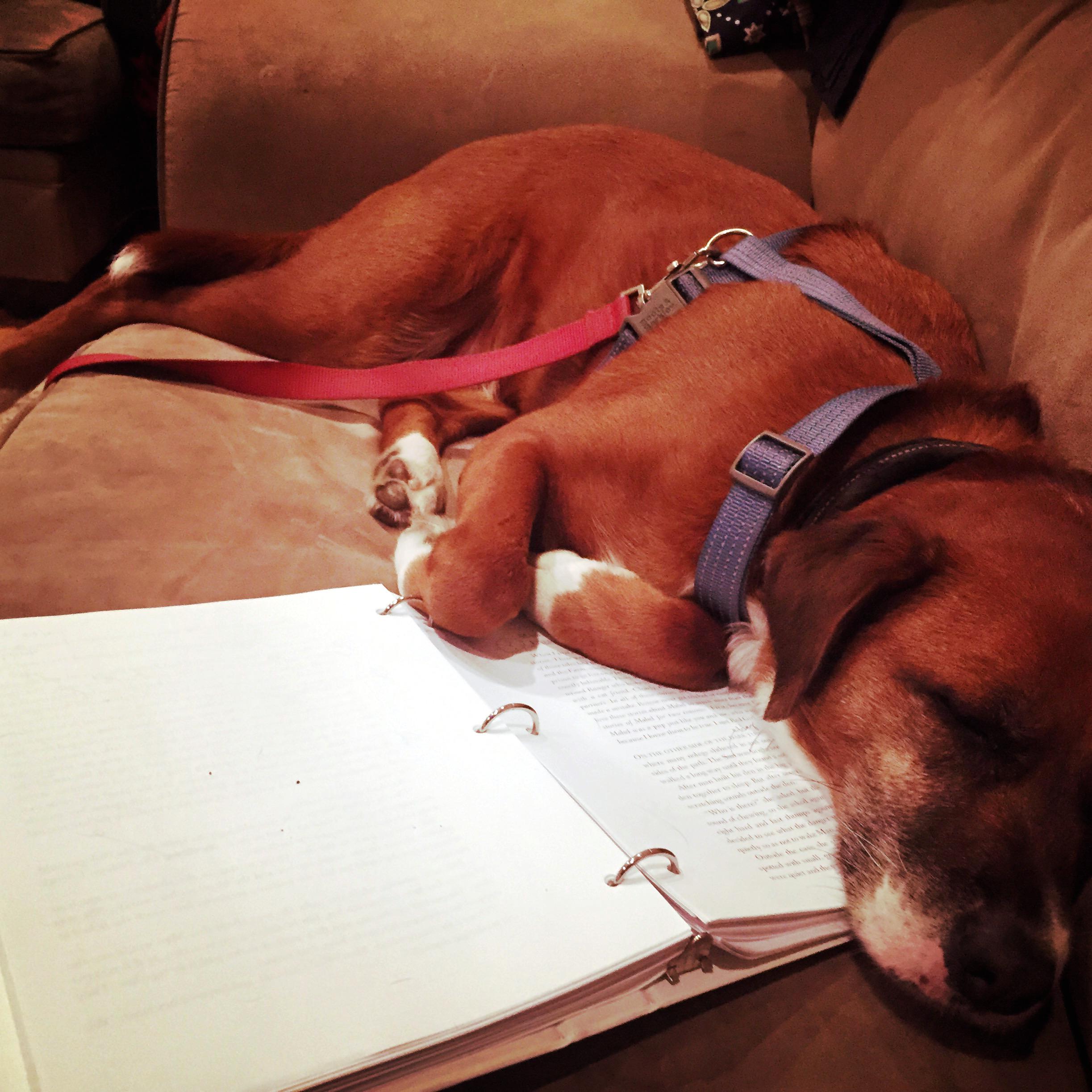 Mabel and Her Memoir