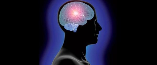 head_and_brain