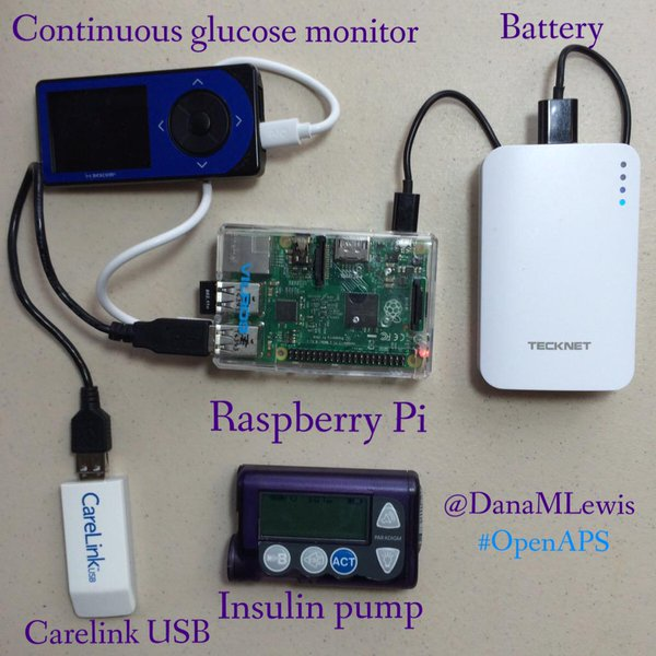 pancreas artificial raspberry