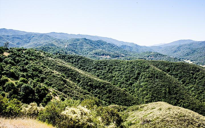 Quail Ridge Reserve