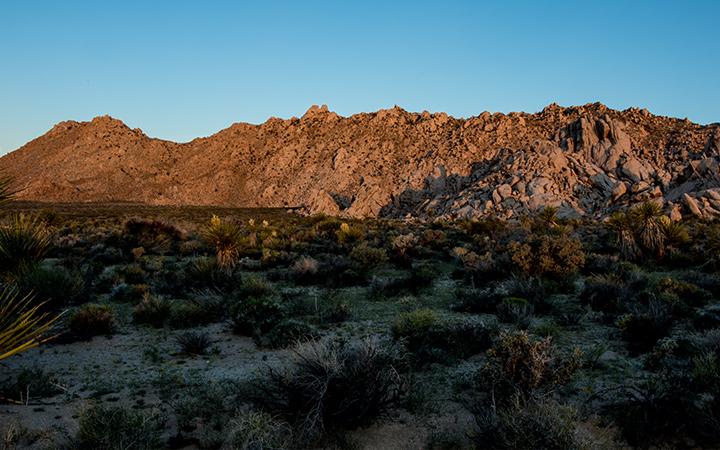 Sweeney Granite Mountains Desert Research Center