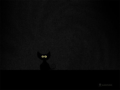 black cat dark wallpaper