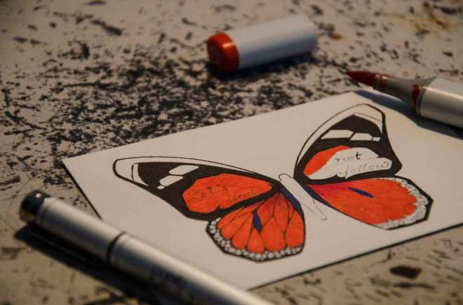 butterfly-effect-Andreas-Preis-bts5