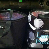 Thirty-One Lunch Totes