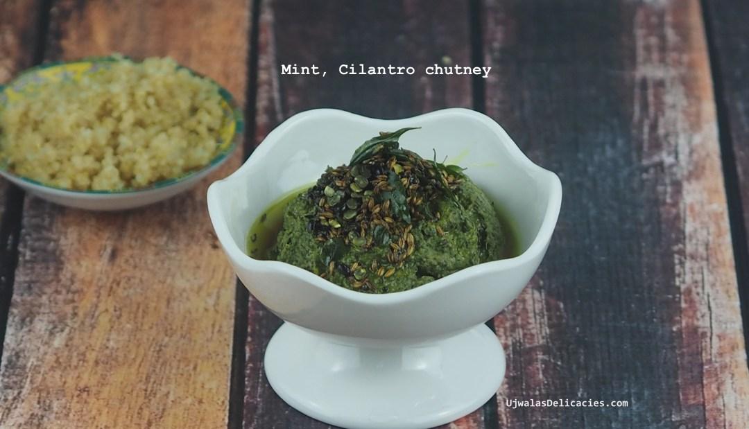 Authentic south indian mint, cilantro chutney