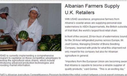 Albanian farmers to export watermelons to British ASDA