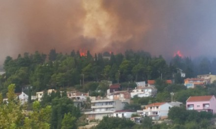 Fire in Albanian town Ulqin threatens ancient olive grove