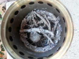 ashes in survival stove