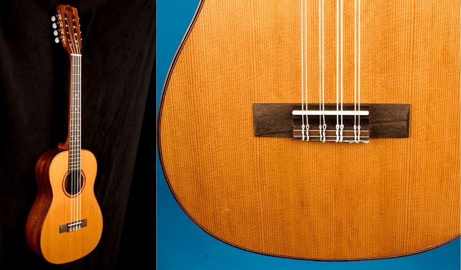 KALA KA-ABP8-CTG 8-STRING BARITONE ukulele review