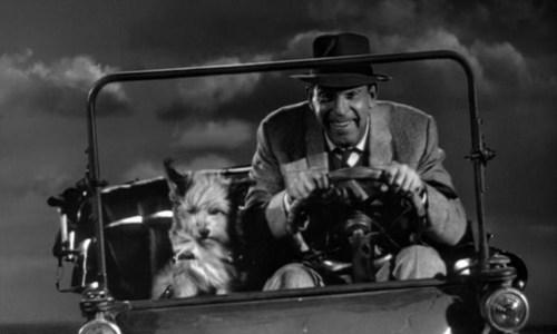 Medium Of Fred Macmurray Movies