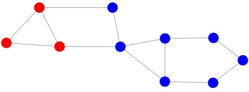 A spcial network of minority blues and majority reds