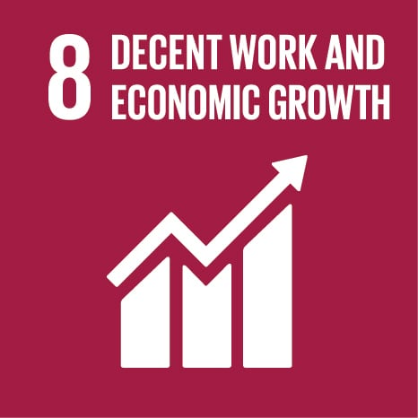 Goal 8: Promote sustained, inclusive and sustainable economic growth, full and productive employment and decent work for all